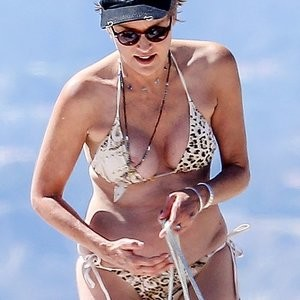 BoobSlip Photos of Sharon Stone – Celeb Nudes