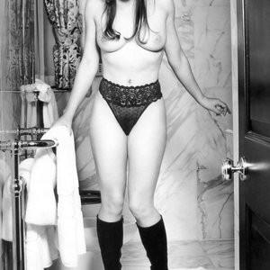 Elizabeth Hurley Topless Photo – Celeb Nudes