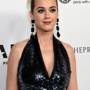 Fishnets-Wearing Katy Perry on the Red Carpet – Celeb Nudes