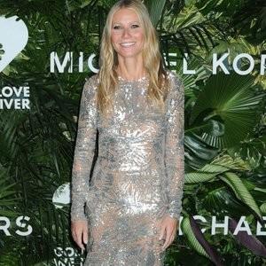 Gwyneth Paltrow See-Through – Celeb Nudes
