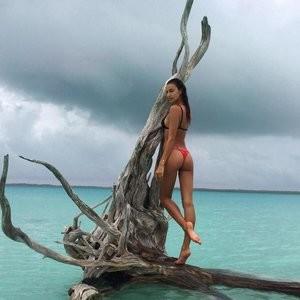 Irina Shayk Booty pic – Celeb Nudes
