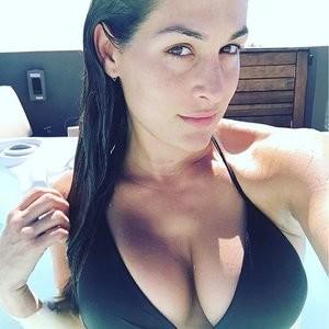 Nikki Bella Cleavage Photo – Celeb Nudes