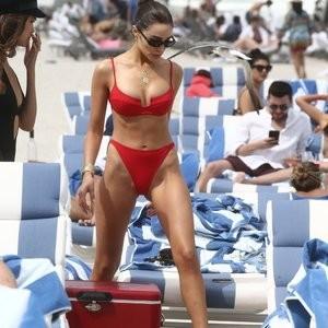 Olivia Culpo & Devon Windsor Bikini – Celeb Nudes