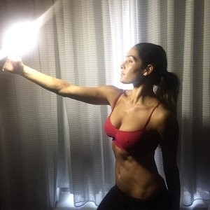 Pokies Photo of Nikki Bella – Celeb Nudes