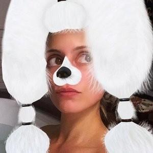 Sexy NipSlip Photo of Dianna Agron – Celeb Nudes