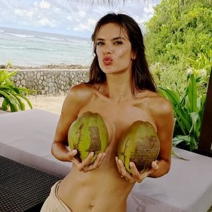 Sexy Photos of Alessandra Ambrosio – Celeb Nudes